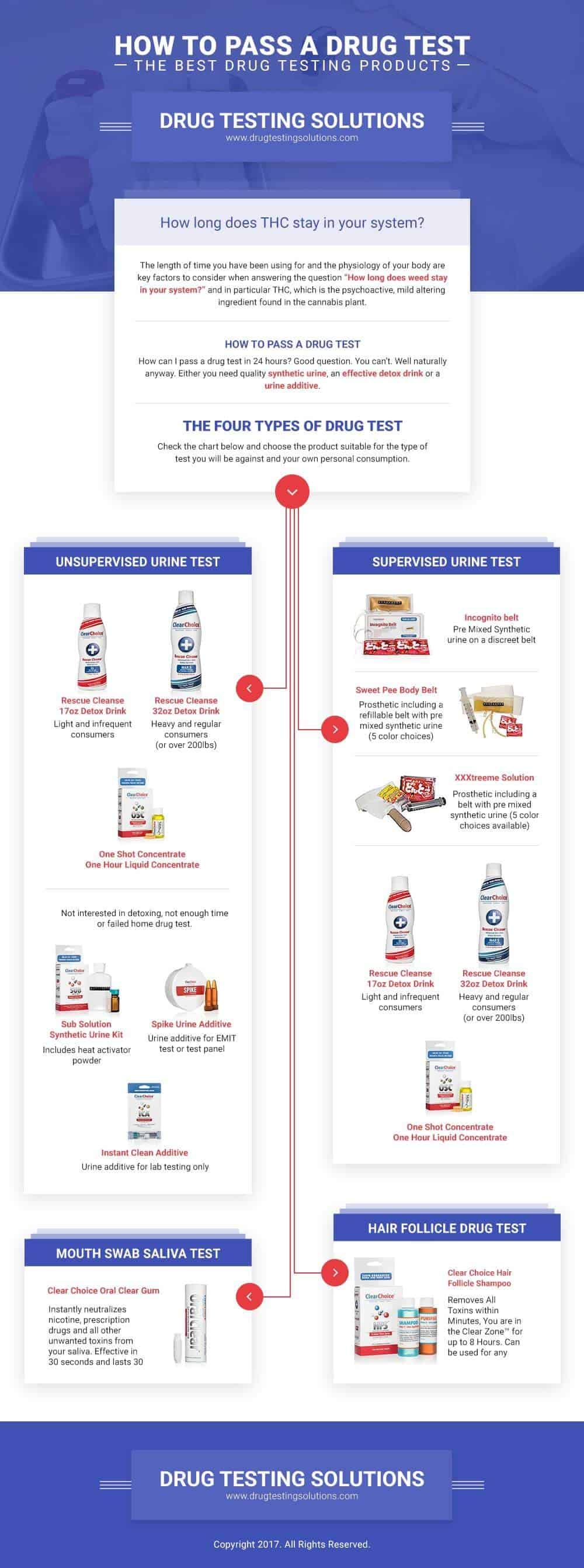 Drug Testing Solutions Infographic
