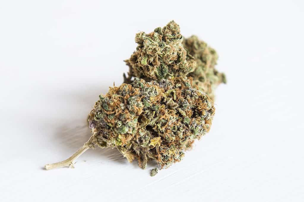 Getting the Best Aroma & Taste From Your Marijuana Plant